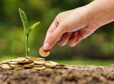 social impact profit